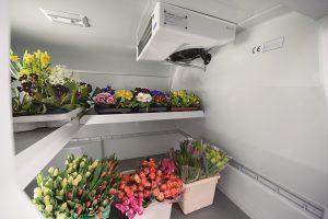 light-duty_vehicles_transportation_flowers_05
